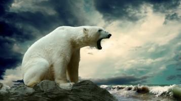 оскал белого медведя