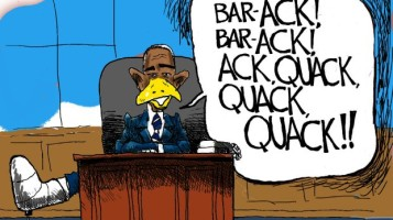 nov4_14cartoons_lameduckpresident
